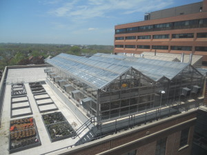 roof top greenhouse